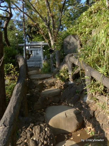 鳩森八幡神社 富士塚