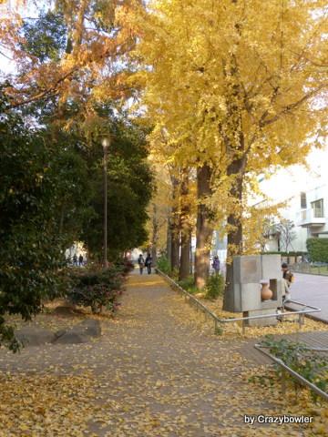 滝野川公園(北区)
