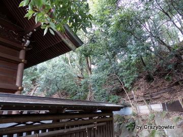 貫井神社(小金井市)