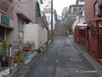 三角台地 国分寺丸山台(東京都)
