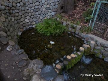 真姿の池湧水群(国分寺市)