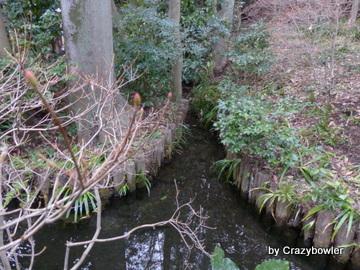 真姿の池(国分寺市)