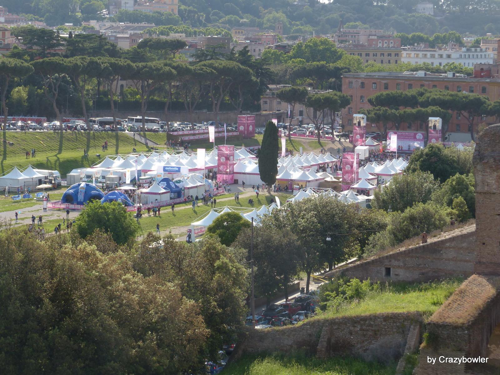 パラティーノの丘から見るチルコ・マッシモ