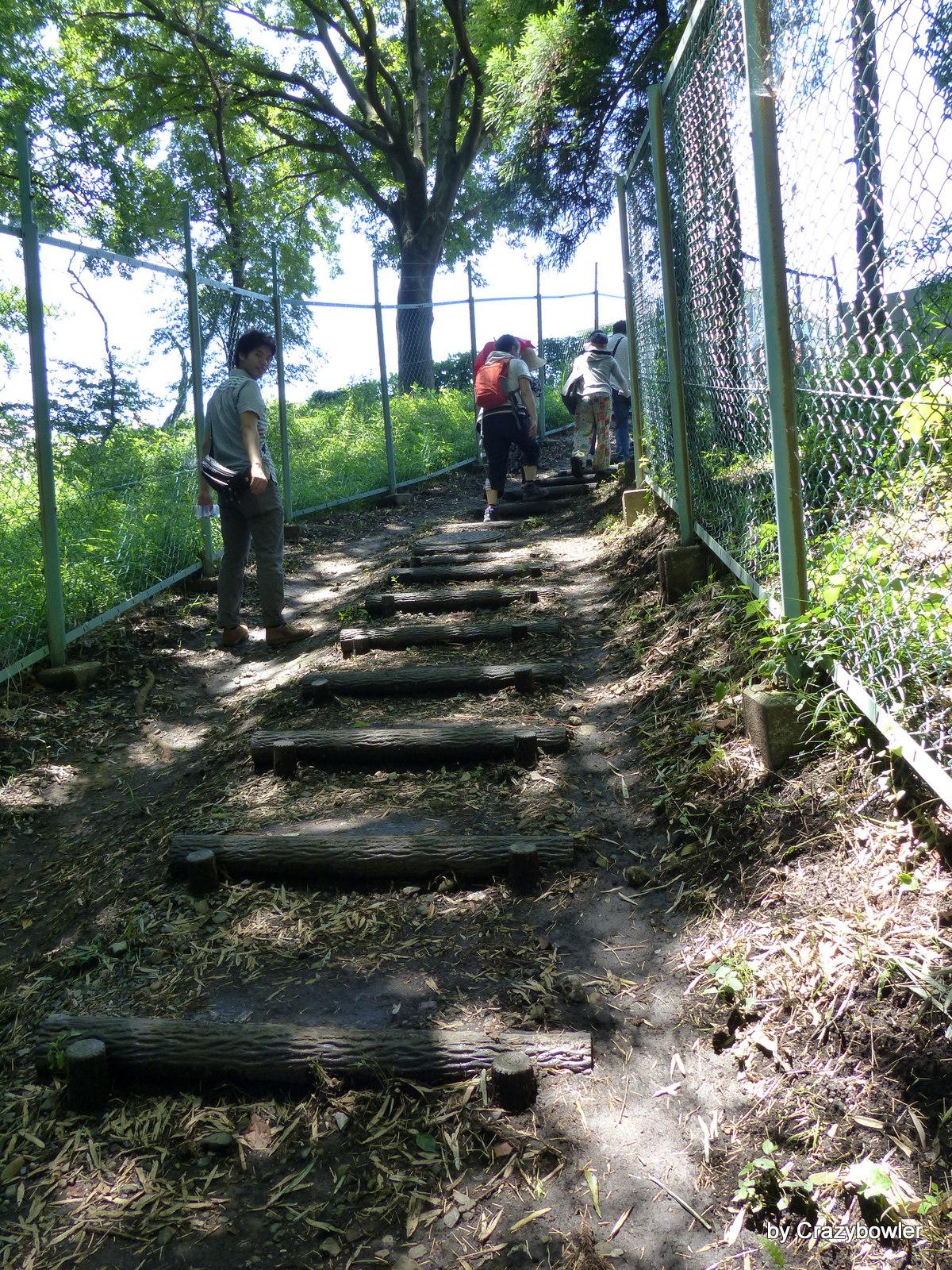 神代農園の谷から登る坂