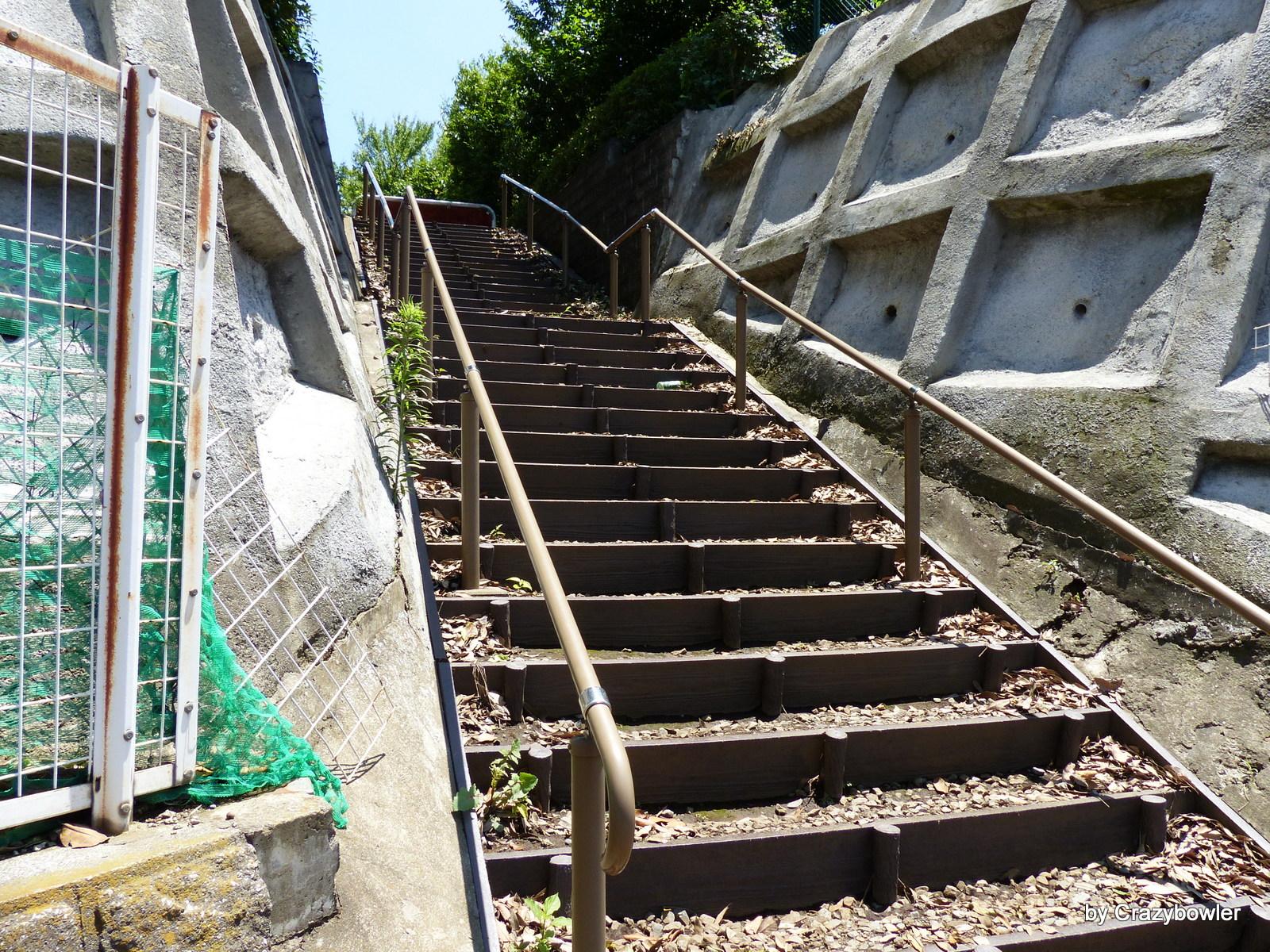 深大寺の岬から三鷹通りへ下る階段