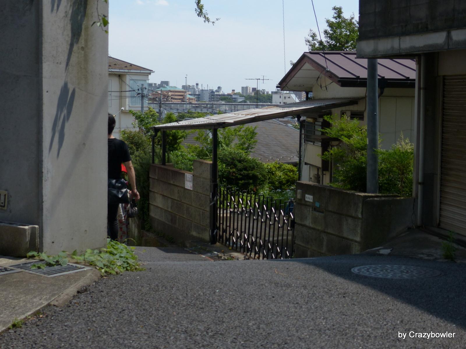 深大寺元町3-17,18【国分寺崖線フィールドワーク】
