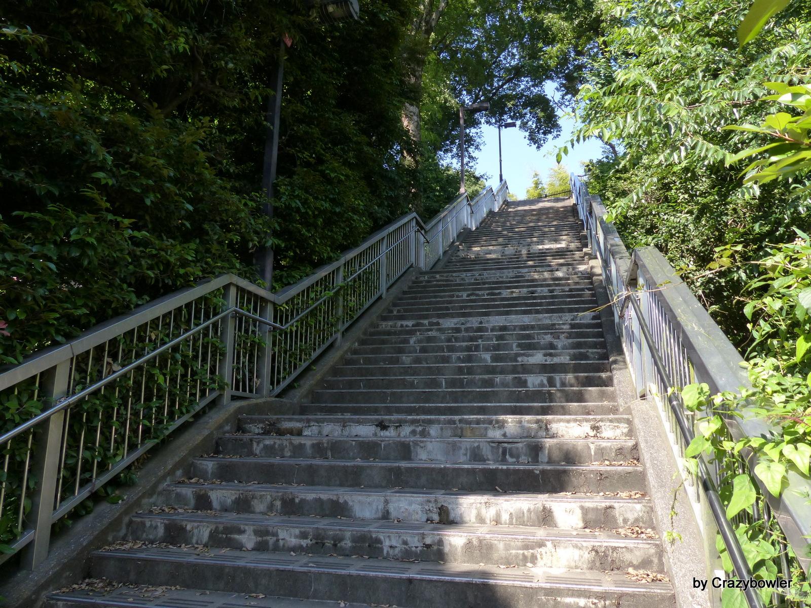 三鷹市大沢2丁目の国分寺崖線遊歩道「第七中学校脇階段」