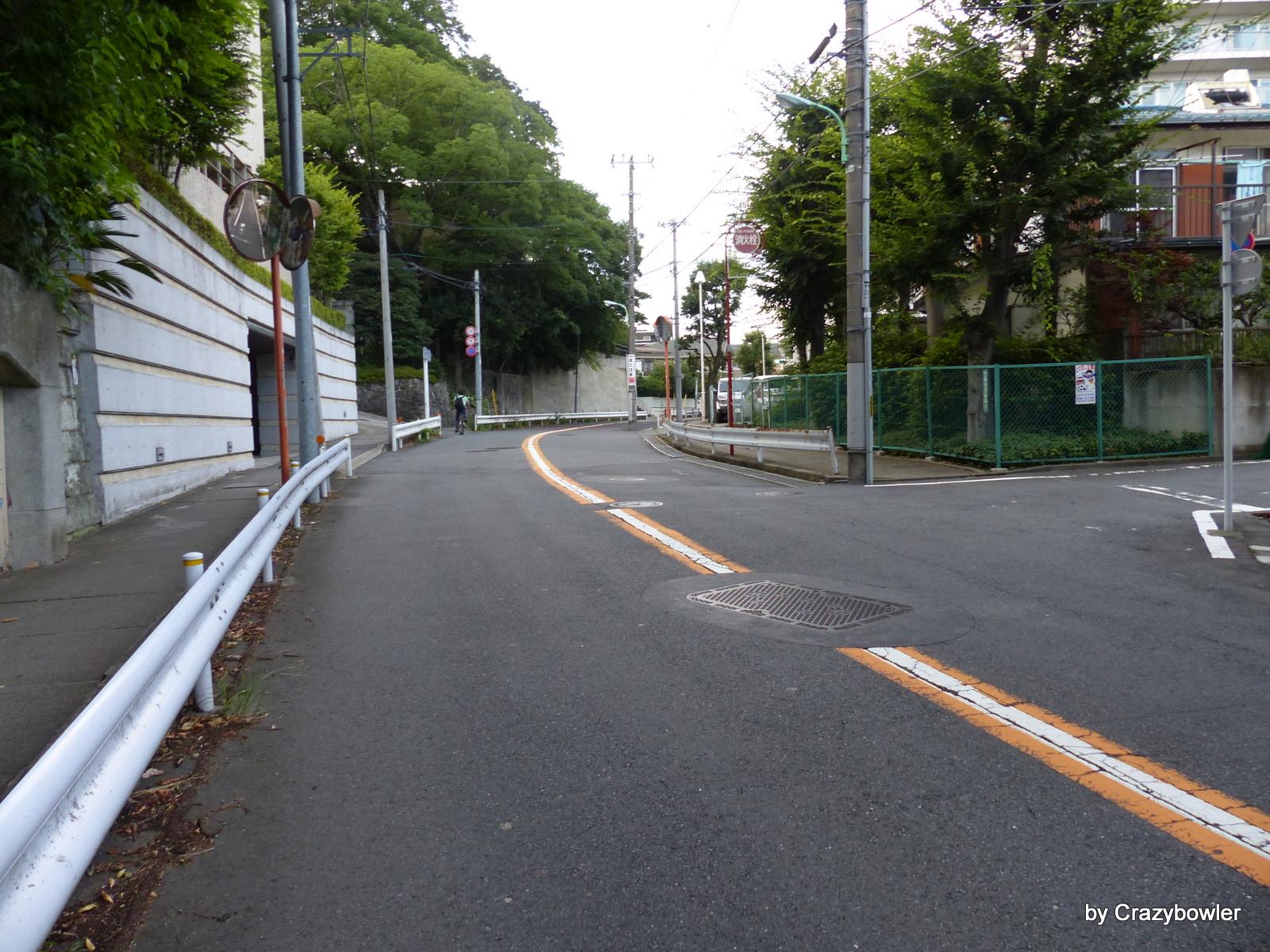 まむし坂(世田谷区)