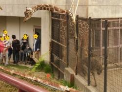 2014盛岡動物園⑤