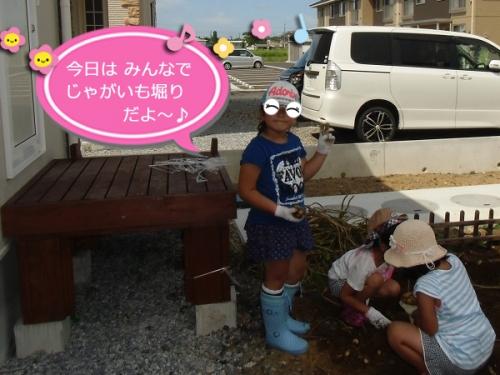 2014じゃがいも堀り①