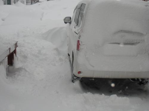 2.16大雪③