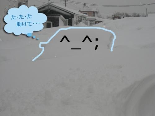 2.16大雪④