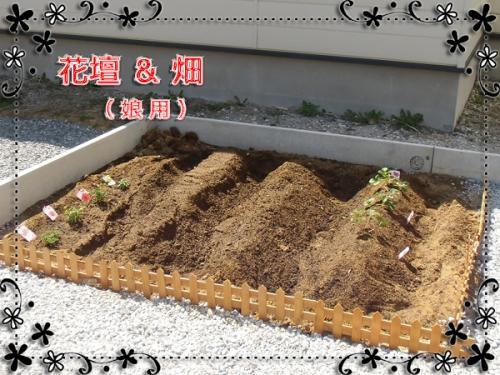 娘・花壇&畑