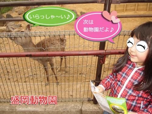 2014盛岡動物園①