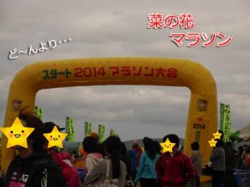 菜の花マラソン①