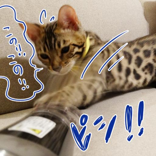 20140623_04.jpg