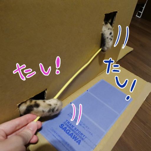 20140707b_02.jpg