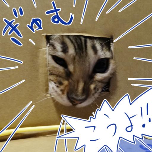 20140707b_04.jpg