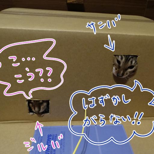 20140707b_05.jpg