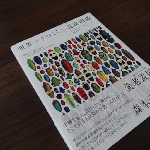 20140829_02.jpg