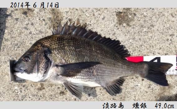 20140614awaji490.jpeg