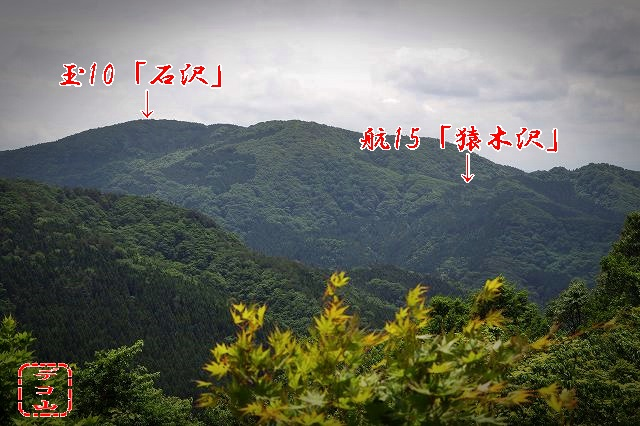 yhj414z8_01.jpg