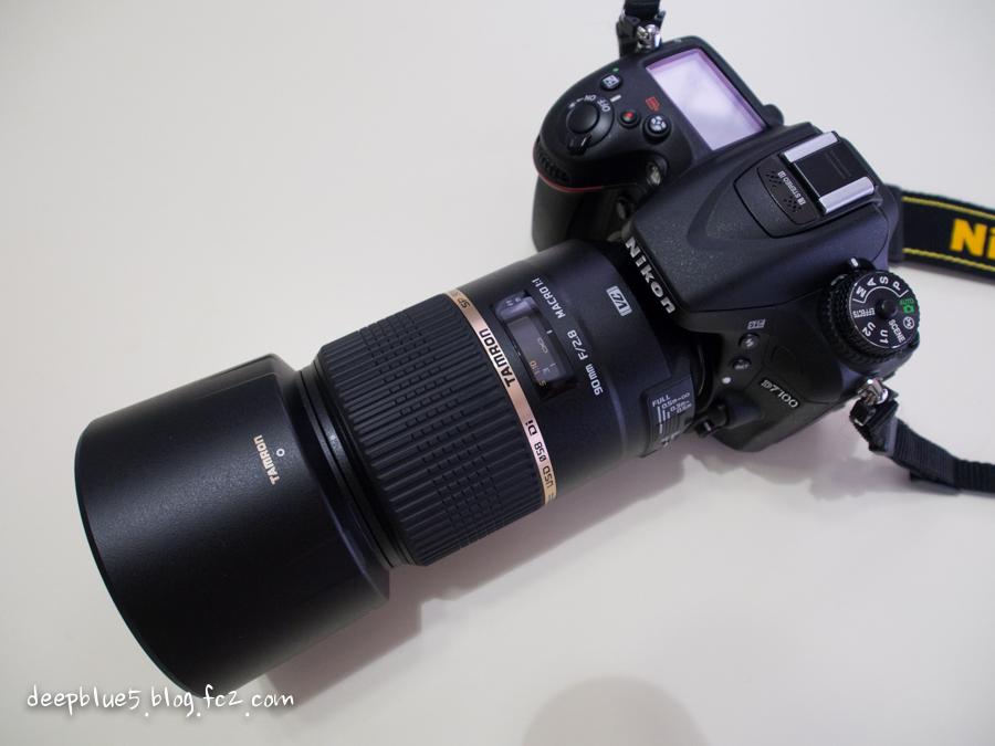 P3180808.jpg