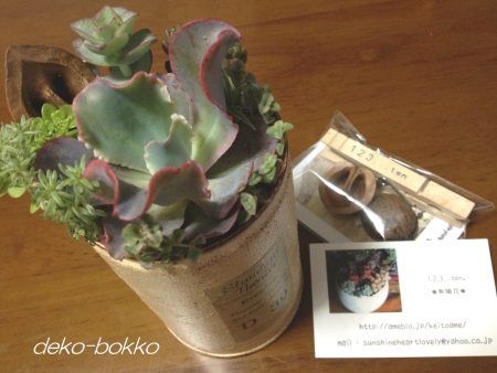 紫陽花さん寄せ植えリメ缶