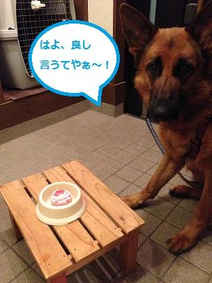 ケーキまだ?