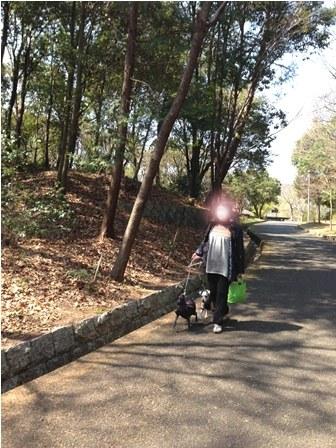 民博公園0101