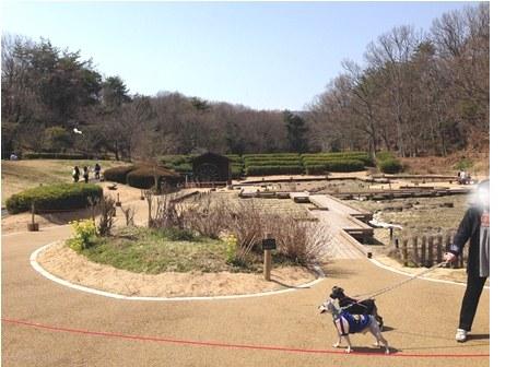 民博公園0103