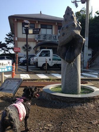 白浜2014(3)06