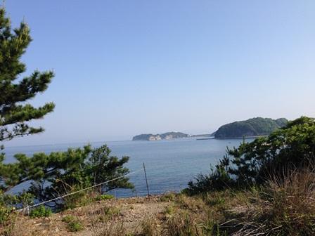 白浜2014(3)09