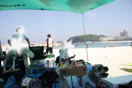 白浜2014(3)11