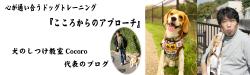 banner_fc2.jpg