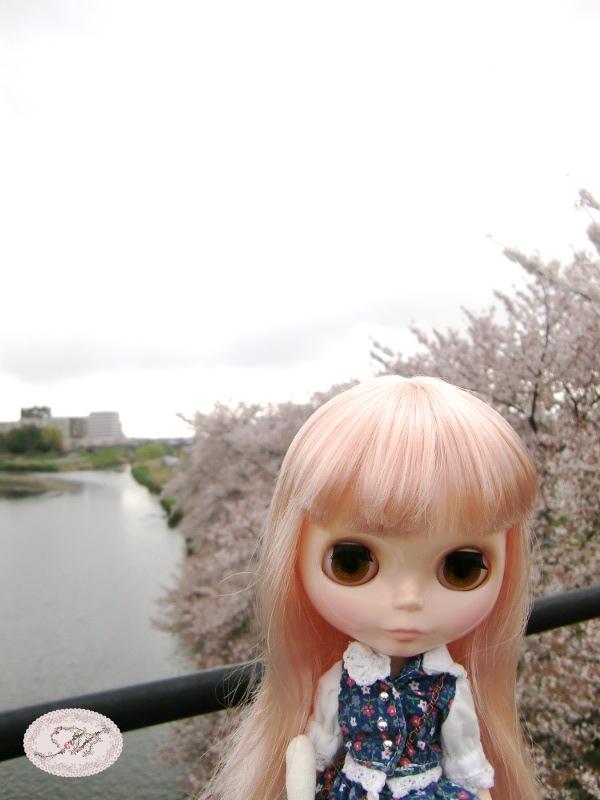 140409_01.jpg