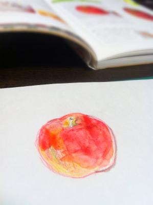 本を見ながらりんご描く