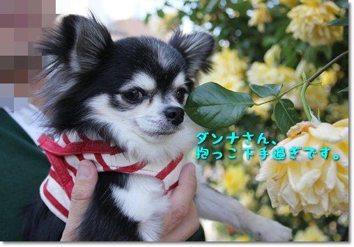 4_20140609213812da3.jpg