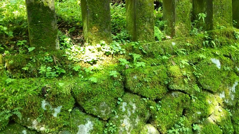 榛名神社参道景色2