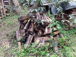 久しぶりの薪小屋2