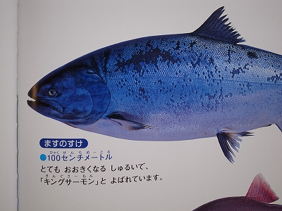 20140801 (7)