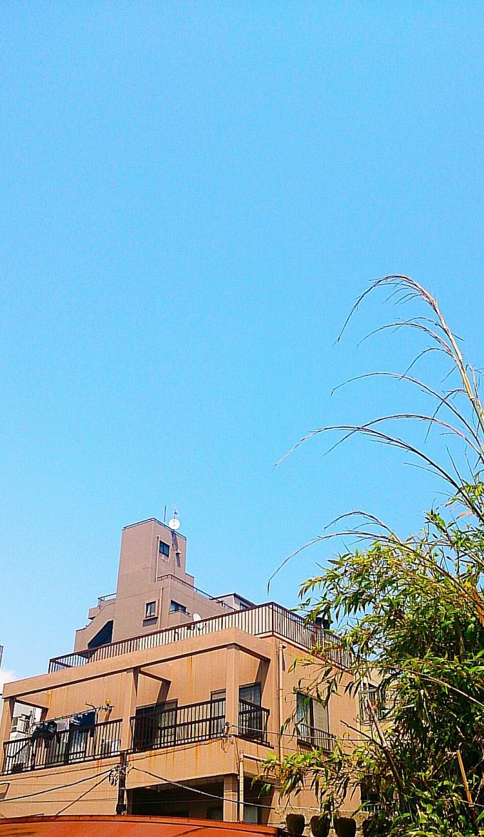 碧空_20140509