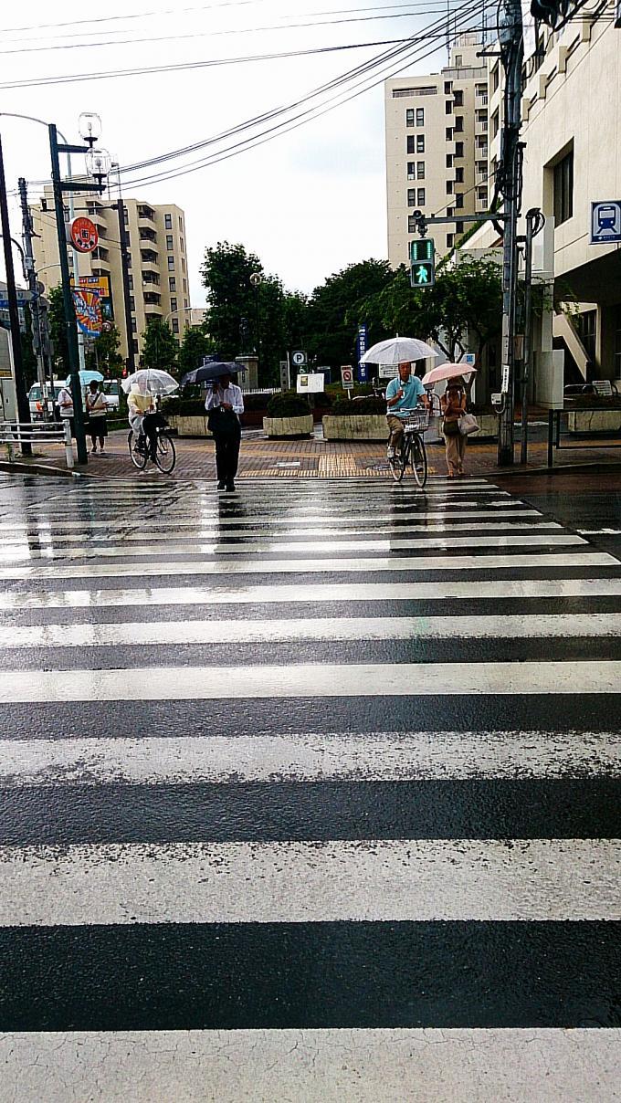 雨_20140627