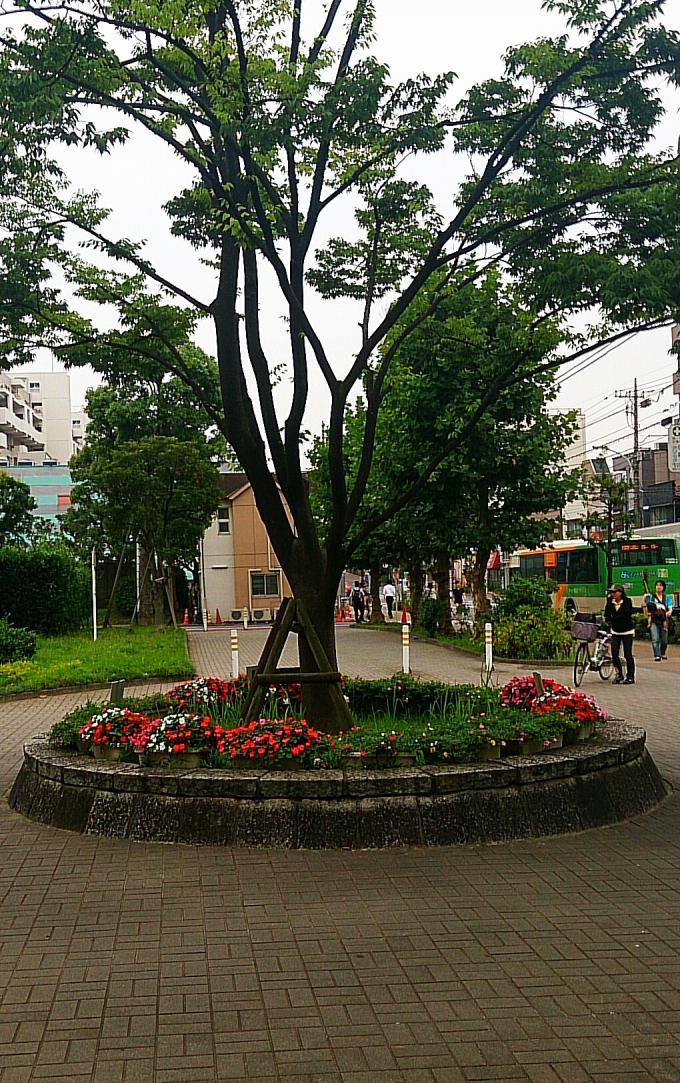 花壇_20140703