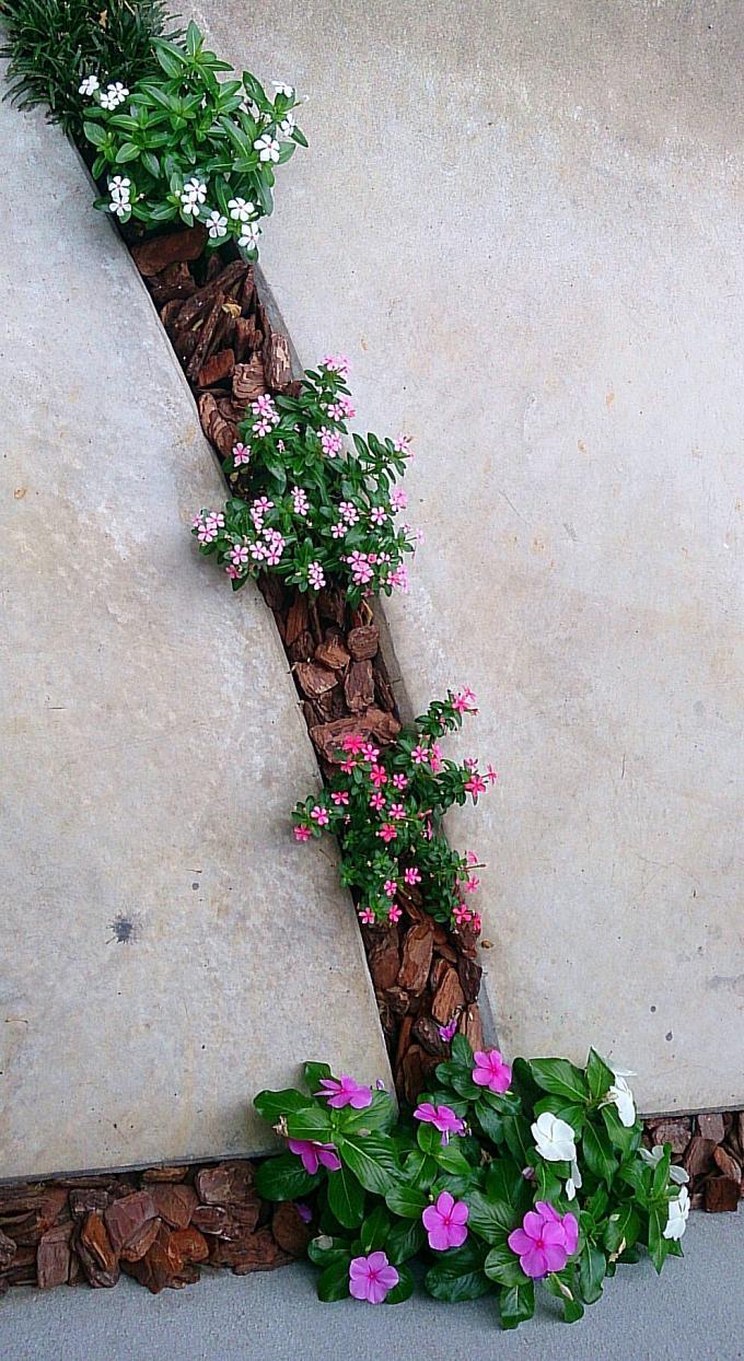 FLOWER_20140717