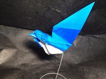飛ぶ小鳥2