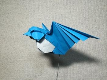 飛ぶ小鳥3