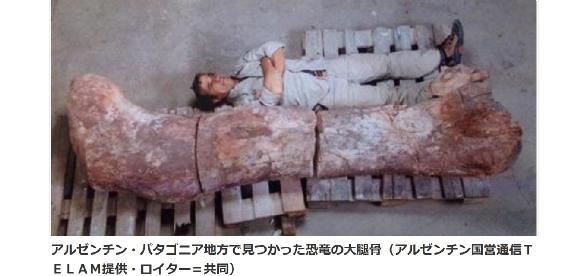 恐竜大腿骨