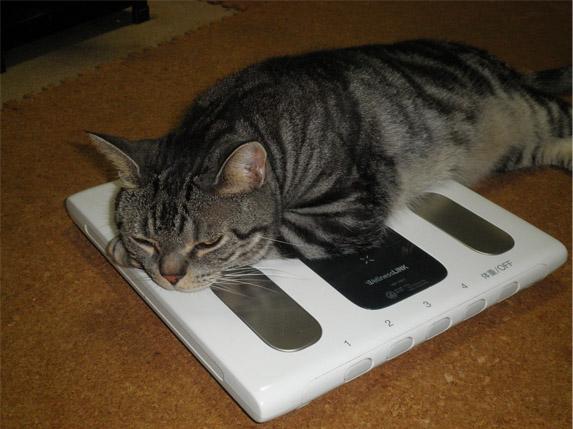 俺の体重計や