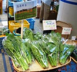 高原野菜1号